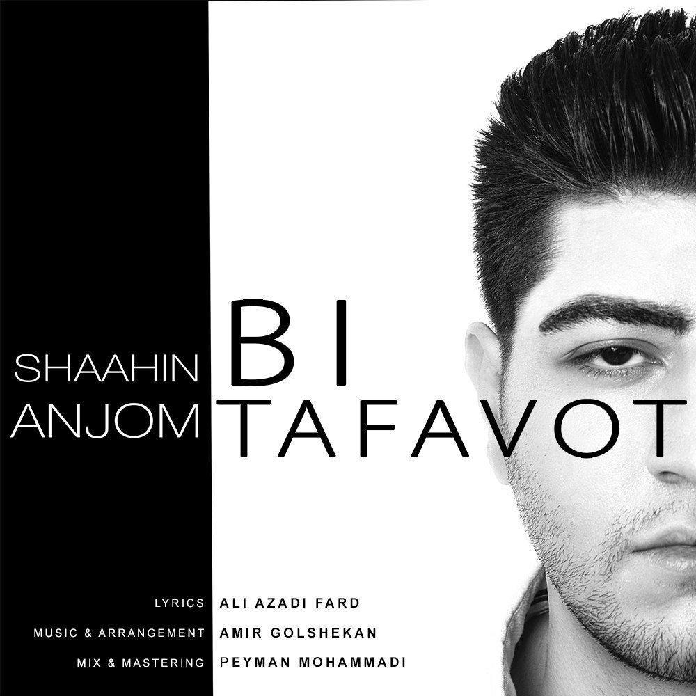 Shaahin Anjom – Bi Tafavot