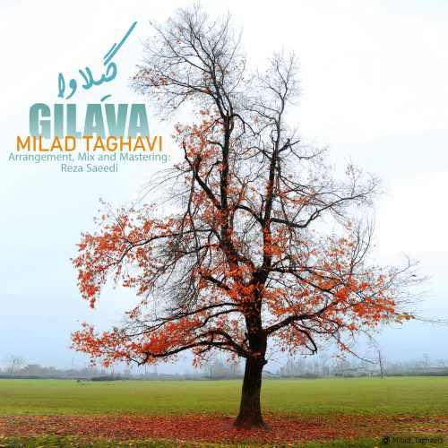 Milad Taghavi – Gilava