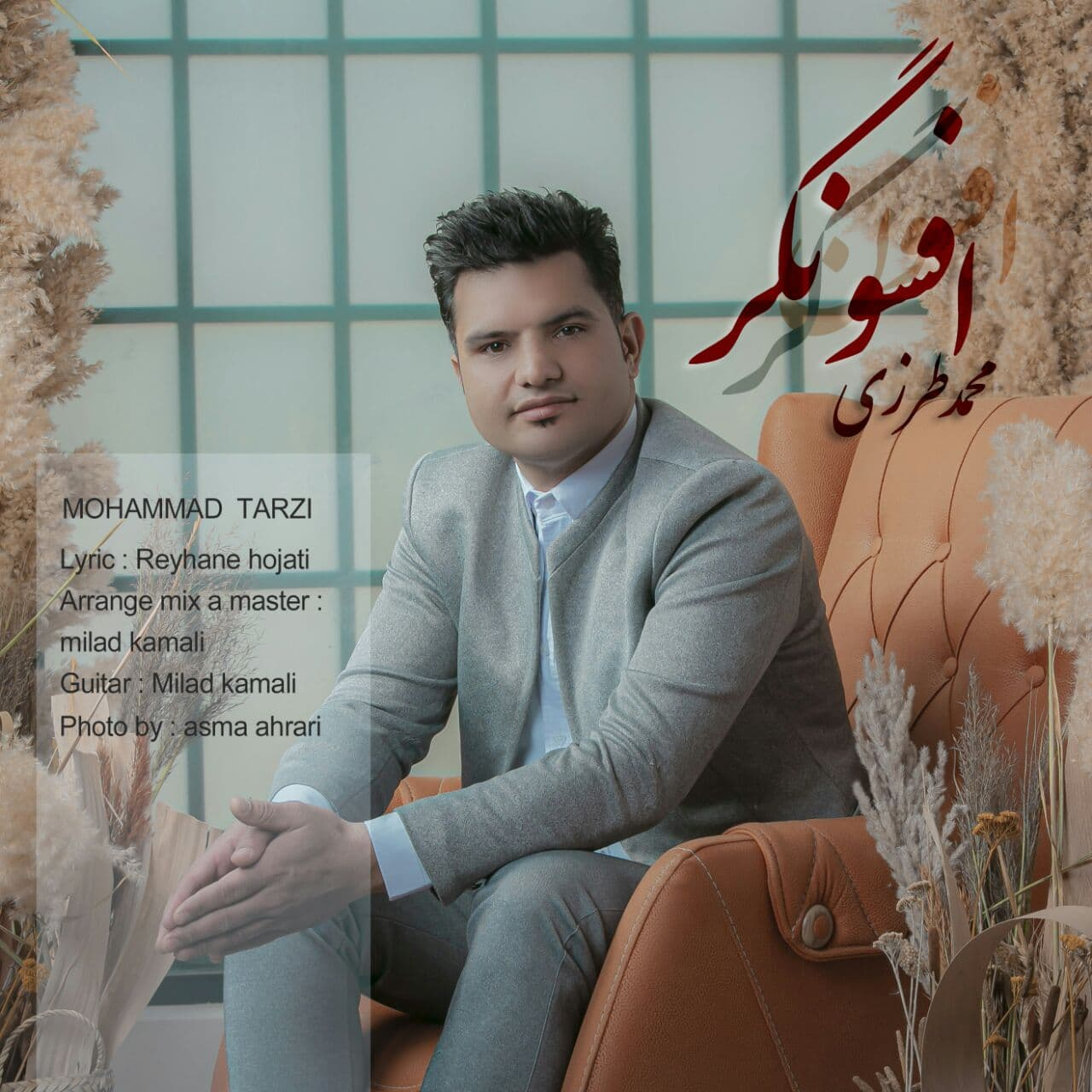 Mohammad Tarzi – Afsongar